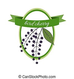 Handdrawn vector illustration bird cherry Medicinal berryFor...