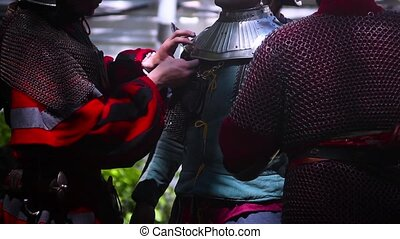 pages help put the Landsknecht armor - pages help put...