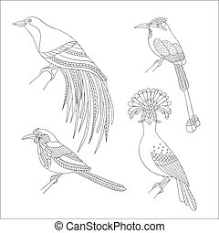 Set of tropical birds hand draw on a white background - Set...