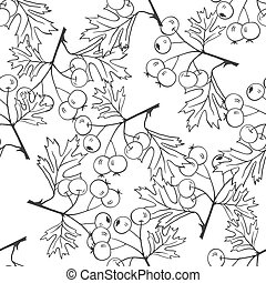 Seamless black and white pattern with hawthorn.Medicinal...