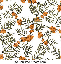 Seamless pattern with sea-buckthorn.Medicinal berry...