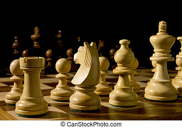 White and black chess pieces