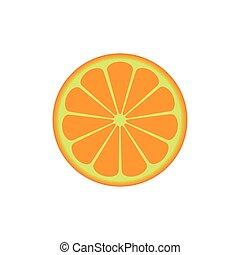 vector of fruit orange