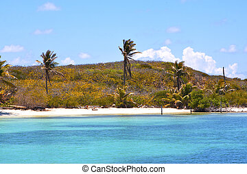isla contoy mexico froath and blue - blue isla contoy in...