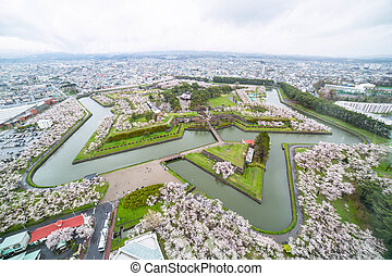 Goryokaku Park Top view where is star of building for...