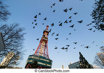 Sapporo Tower surround around Odori park ,public place for...