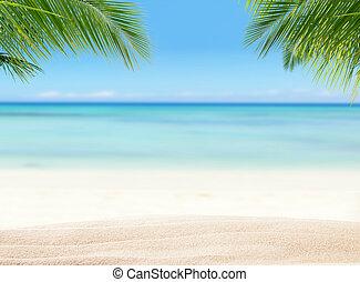Summer sandy beach with blur ocean on background. Palm...