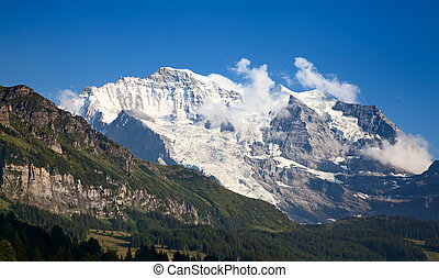 Jungfrau region - Summer landscape in the Jungfrau region