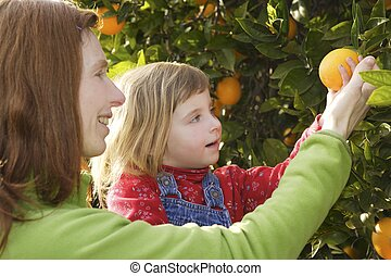 mother showing daughter orange tree harvest