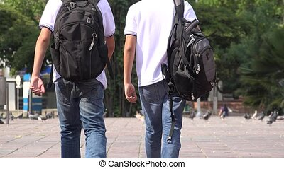Teen School Boys Walking