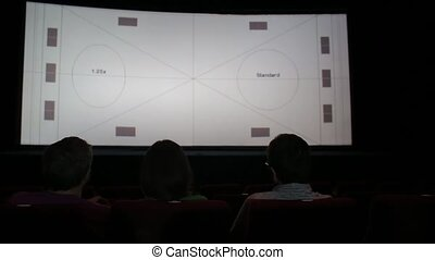 Threesome in the cinema hall