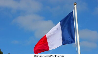 Flag of France on the Wind Waving - French Flag Waving Over...