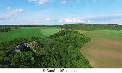 Aerial view of green nature in the village in full hd