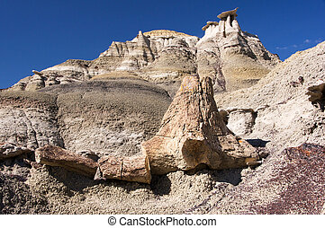 Ah-Shi-Sle-Pah Wilderness Study Area, New Mexico, USA -...