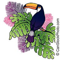 Vertical toucan background