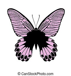 Pink butterfly, vector illustration