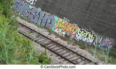 Train and Grafitti