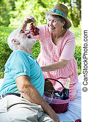 Senior Picnic - Romance - Senior couple on a romantic picnic...