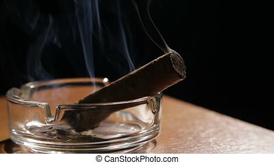Smoking cigar in an ashtray. - Burning cigar in...