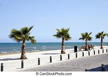 """Seaside Avenue \""""Foinikoudes\"""", Larnaca Cyprus promenade -..."""