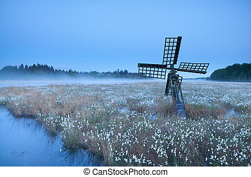 old windmill on swamp with cotton-grass, Drenthe,...
