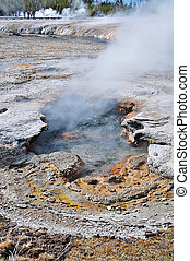 Steaming Geyser Yellowstone - Steaming geyser and hotspring...