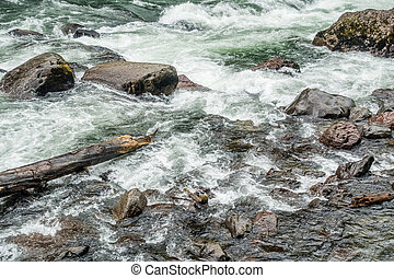 Snoqualmie River Rapids - White water rushes past boulders...