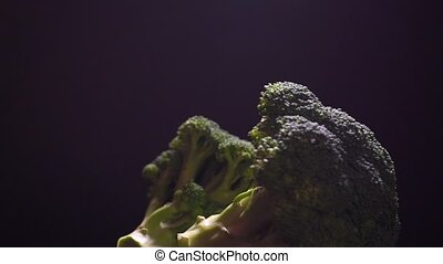 Broccoli rotating on a black background, looped video clip