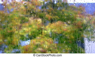Raindrops on the  Window 3