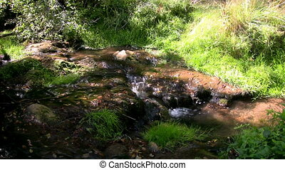 Mountain Stream 1