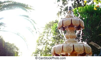 Fountain and the Sunlight in Nature