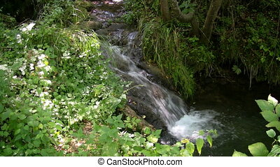 Mountain Stream 8