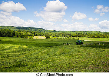 tractor cutting hay field