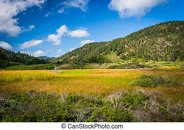 View of hills at Rancho Del Oso - Big Basin Redwoods State...
