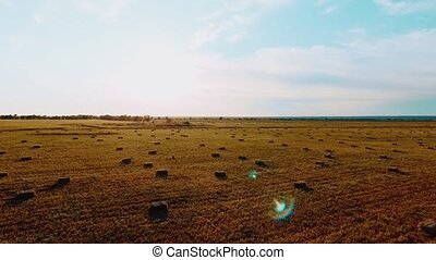 Hay stacks on meadow against sunset background - Aerial view...
