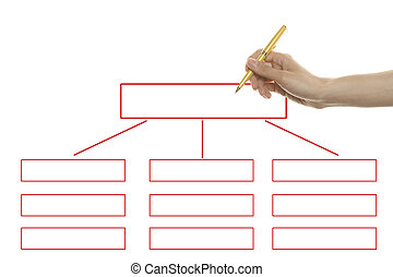 Organization chart - Hand draws the organizations structure...