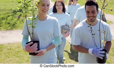 group of volunteers with tree seedlings in park