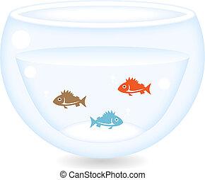 fishes in a bowl of aquarium