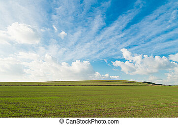 sussex landscape - sloping landscape with clouds and blue...