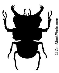 True bug silhouette. Black and white vector illustration