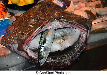 ugly fish with big mouth and small fish inside on the table...