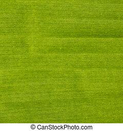 Banana leaves texture - image of Banana leaves background...