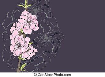 Apple tree flowers - floral illustration of apple tree...