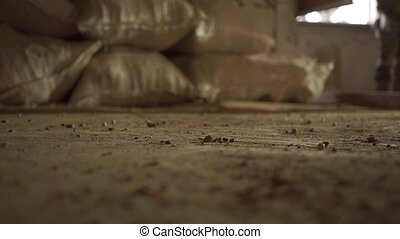 Military boots hitting dirty floor. Close up slow motion...
