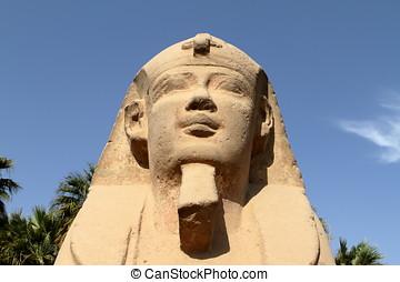 den, väg, av, den, sfinx, från, Luxor,
