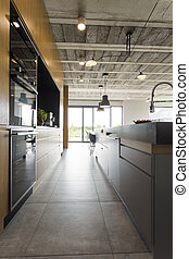 Open kitchen in an industrial style - Spacious open plan...