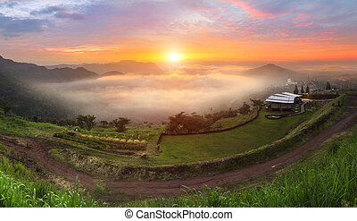 Sunrise landscape in the sea of mist at dawn, Thailand