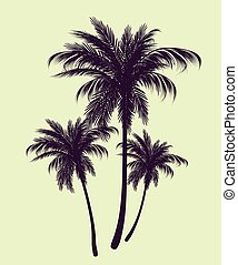 Palm trees in contours