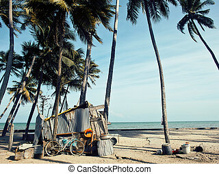 little vietnamese house on seacoast among palms and sand,...
