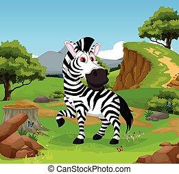 funny zebra cartoon in the jungle